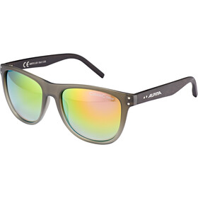 Alpina Ranom Gafas, grey gradient matt